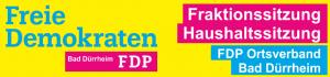 FDP Bad Dürrheim Fraktionssitzung